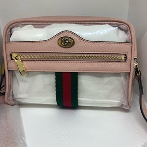 Gucci Transparent Pink & Ghost Ophidia Bag